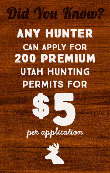 Any hunter can apply for 200 premium Utah hinting permits for $5 per application