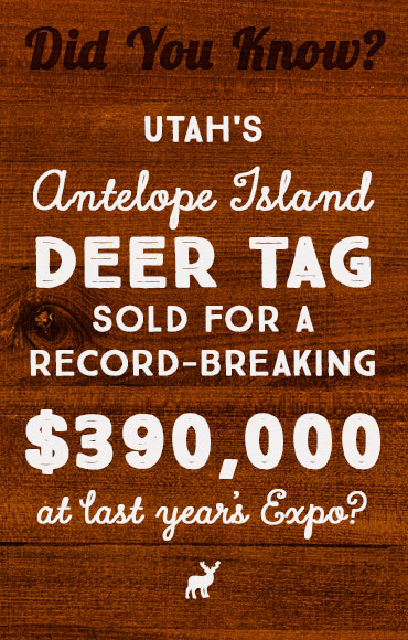 Utah's Antelope Island Deer Tag sold for a record-breaking $390,000 at last year's Expo?