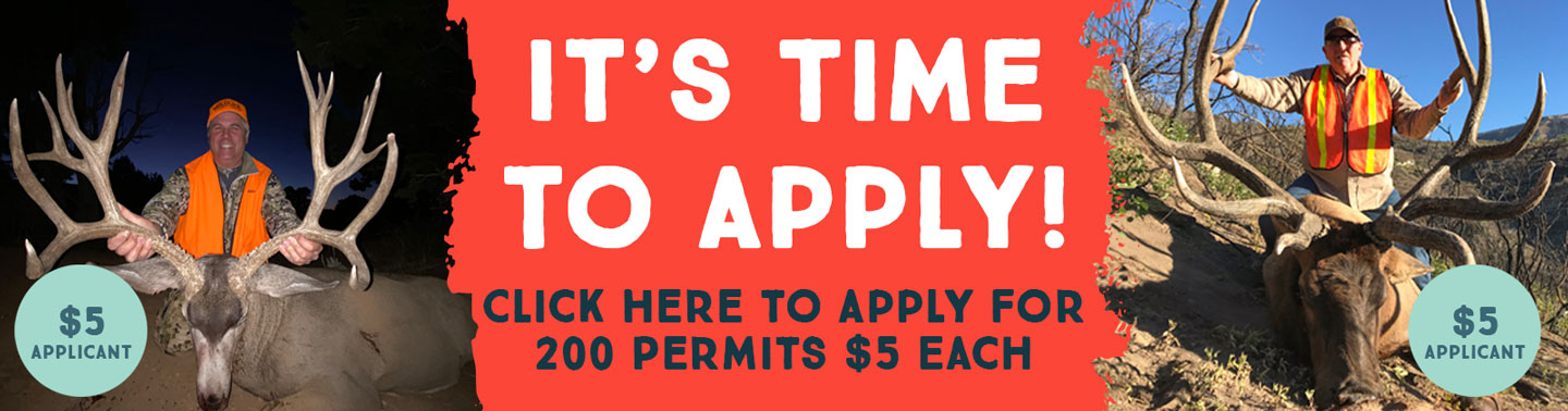 It's Time to Apply - Click Here